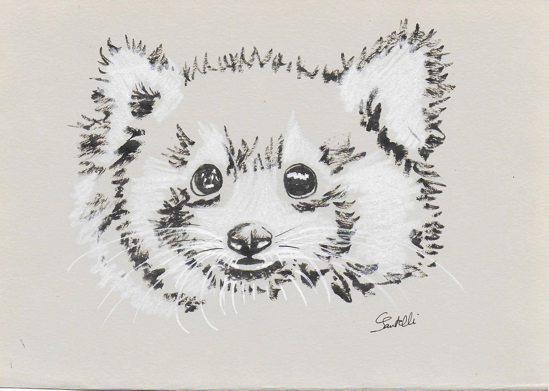 Claudine Santelli-BB panda roux
