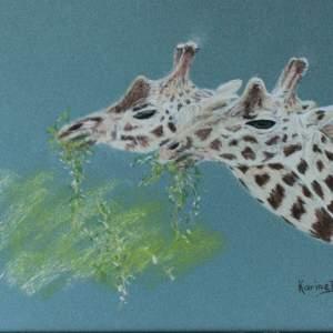 Karine D. – Frères – girafes