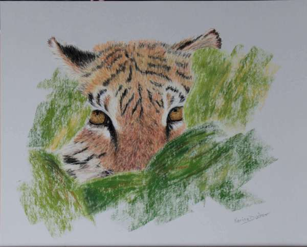 Karine D - Prête-Noéa – tigresse