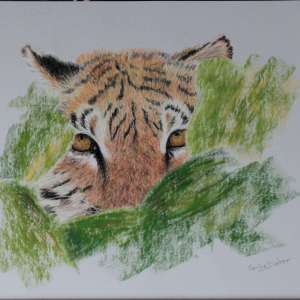 Karine D. – Prête-Noéa – tigresse