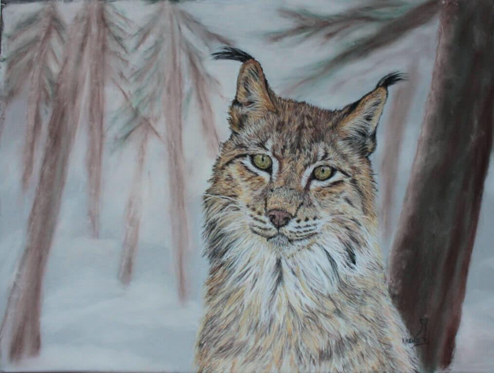 Karine D.-« Pacha » lynx