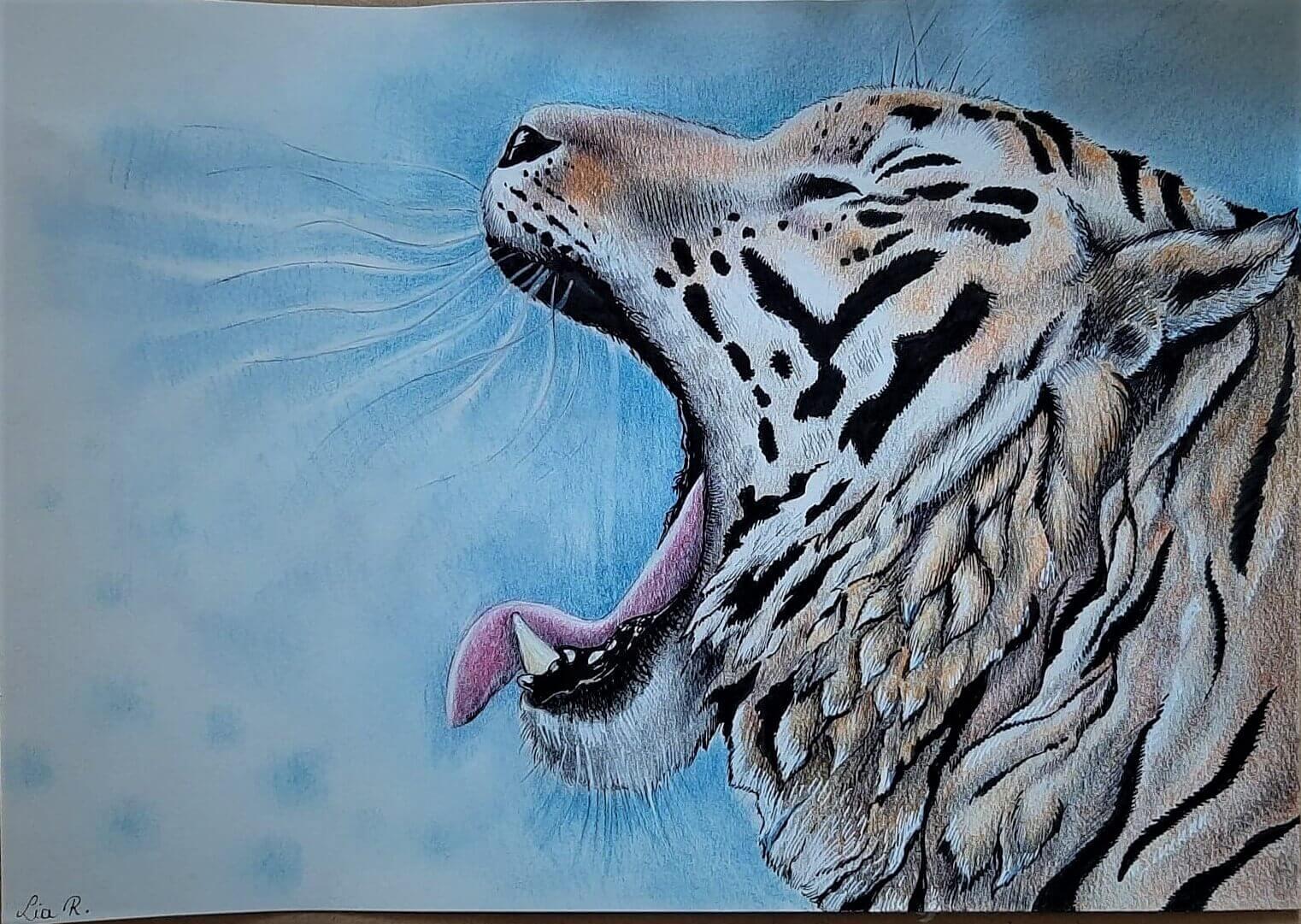 Lia R_Le tigre