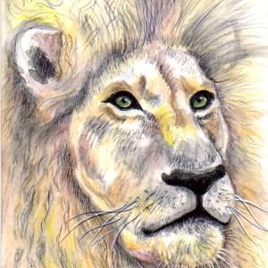 Lia R. – Le Lion