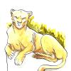 Navas - Lionne