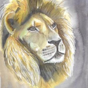 Soizic – Lion