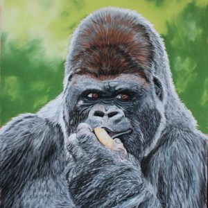 Karine D. – Gorille des plaines