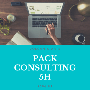Pack Consulting – 5h