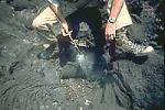 Smoldering cloth on end of stick, Nyamuragira Volcano, Zaire