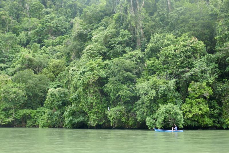Canoe on the Rio Dulce