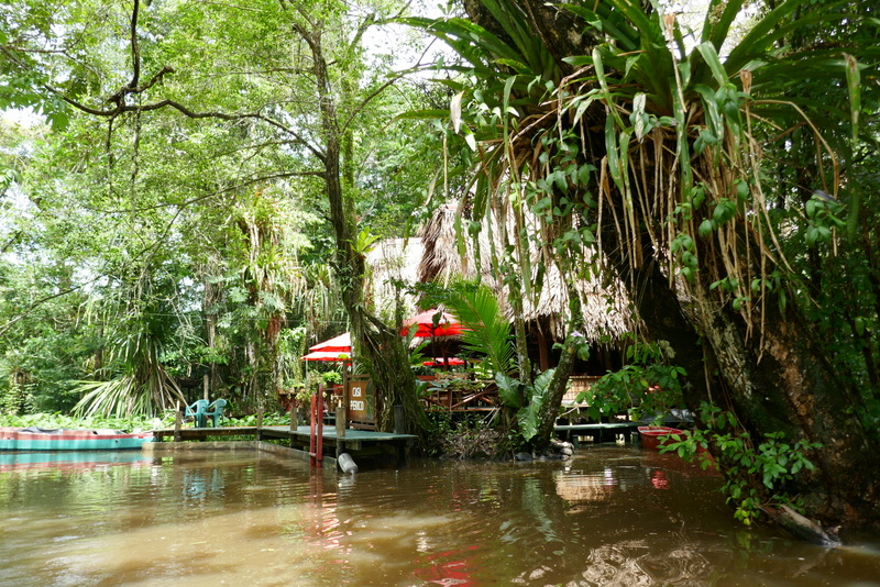 Casa Perico, the guesthouse on a side river of the Rio Dulce.