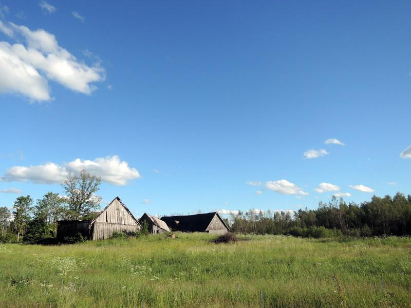 Crumbling sheds in the Estonian countryside