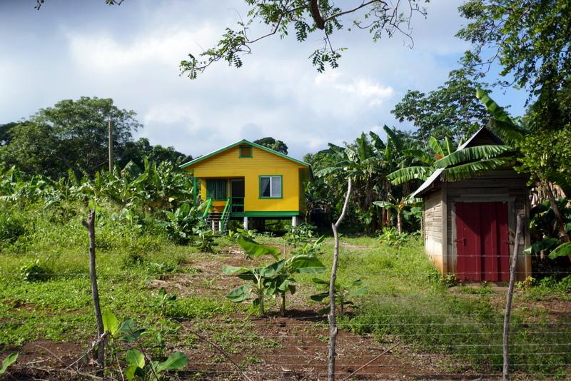 Yellow farm house near Pumpkin Hill in Utila