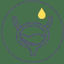 Urineverlies