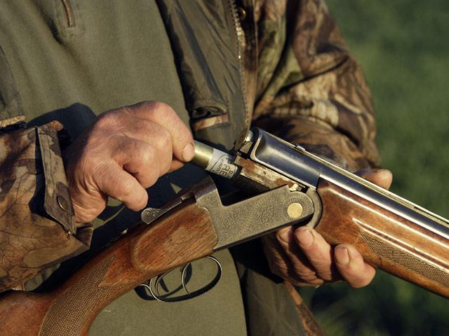 Двое мужчин из Вороново подозреваются в убийстве пса из обреза
