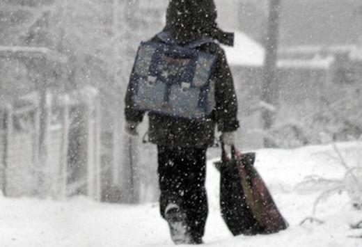 В мороз школьники Ленобласти могут остаться дома