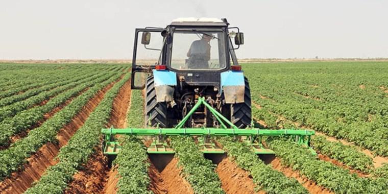 Правительство Ленобласти активизирует кадастровый учёт сельхозземель