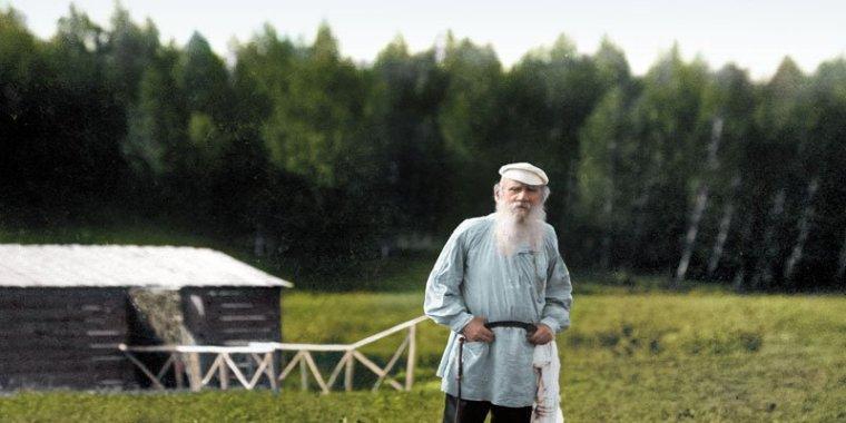 Дачная культура: фермер Толстой