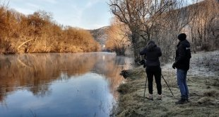 Zimsko prebrojavanje ptica u Danilovgradu, stanje zabrinjavajuće