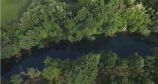 CDE: Potrebno popisati drvnu masu u Parku prirode
