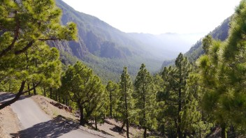 Reisebericht La Palma – Teil 7: In der Caldera de Taburiente