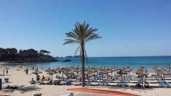 Mallorca …. immer wieder wunderschön!