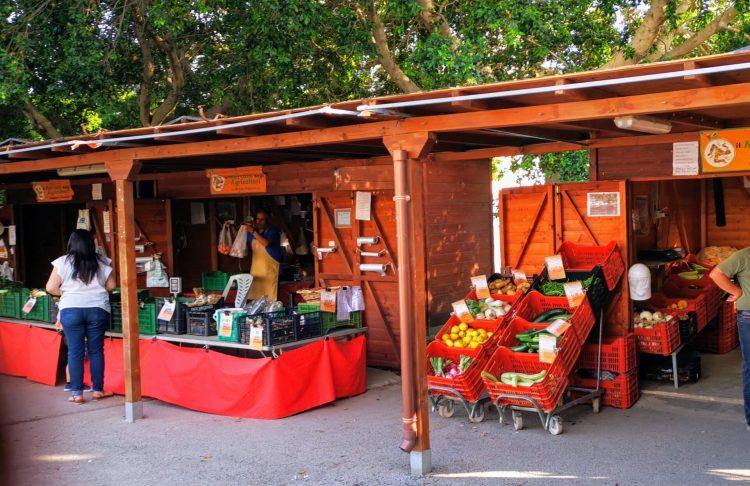 Mangold- Salsiccia Tagliatelle Italien Markt