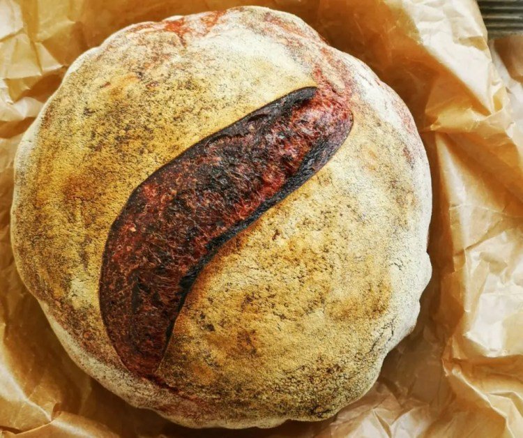 Rote Beete Brot aus dem Topf-ganz