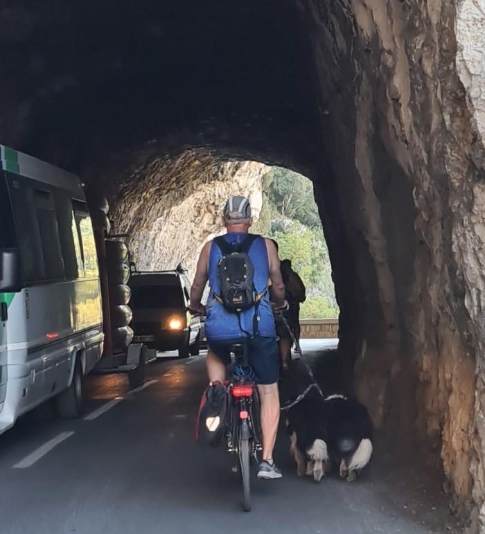fietser met 2 honden