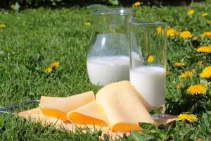 Wie passen Laufen und Milchprodukte?