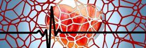 Laufen – so werden die Arterien wieder jung