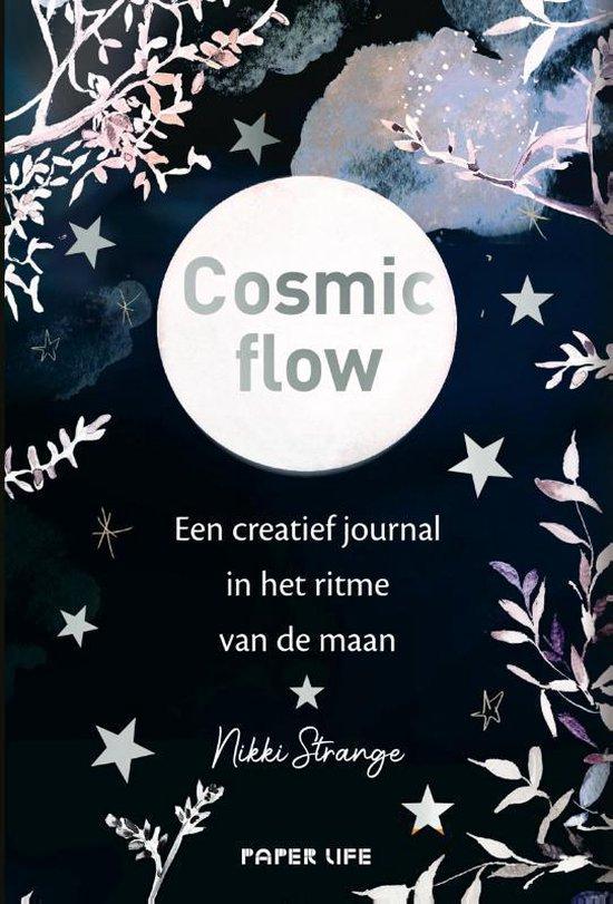 Cosmic flow