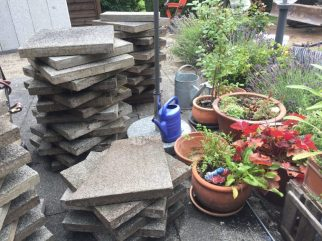 Garten im Juli