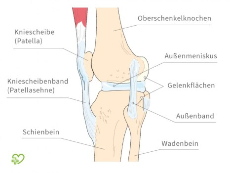http://i.onmeda.de/relaunch/kniegelenk-anatomie-850x638.jpg