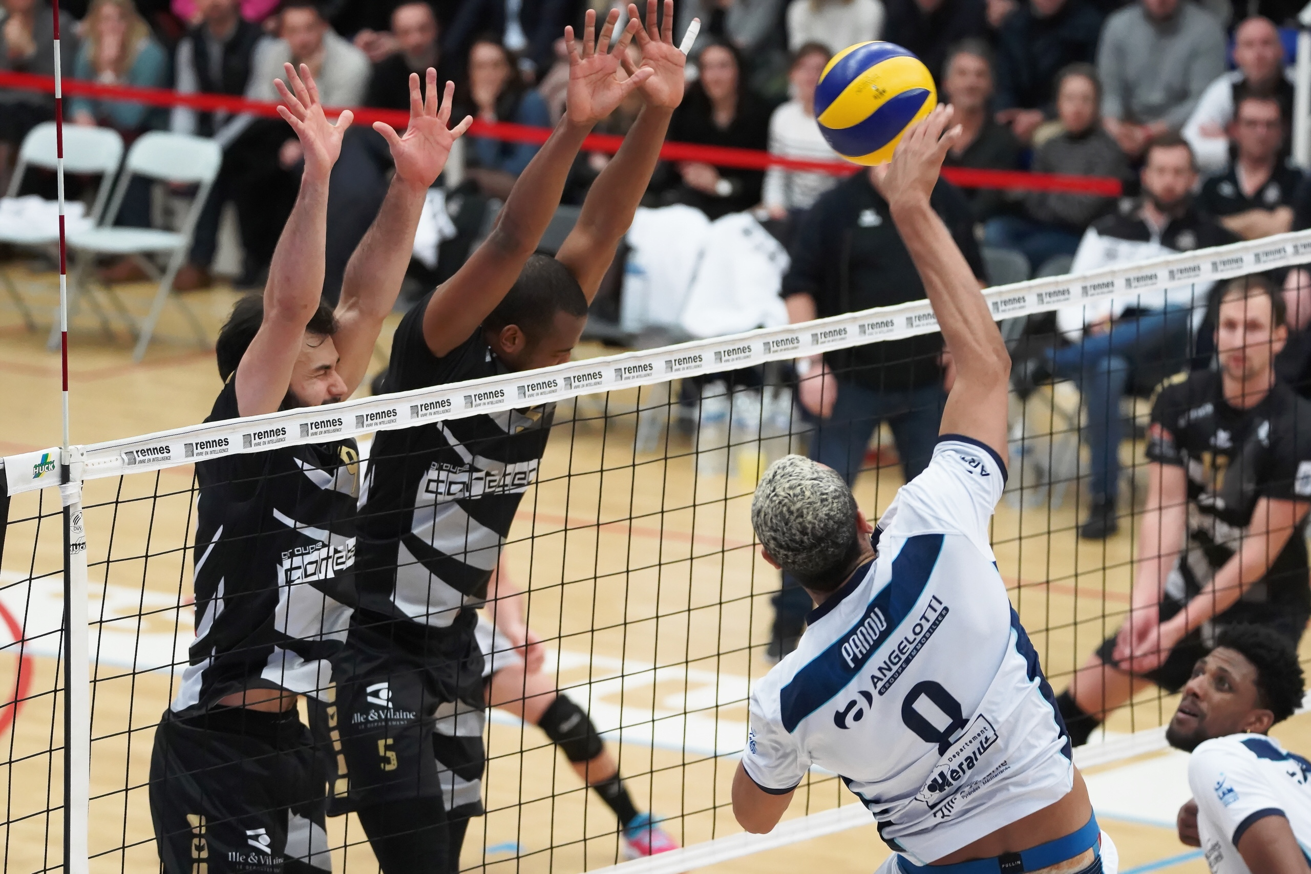 Challenge Cup: amazing blocking display of Aracaju for Rennes in an all-French game, match in Milan postponed