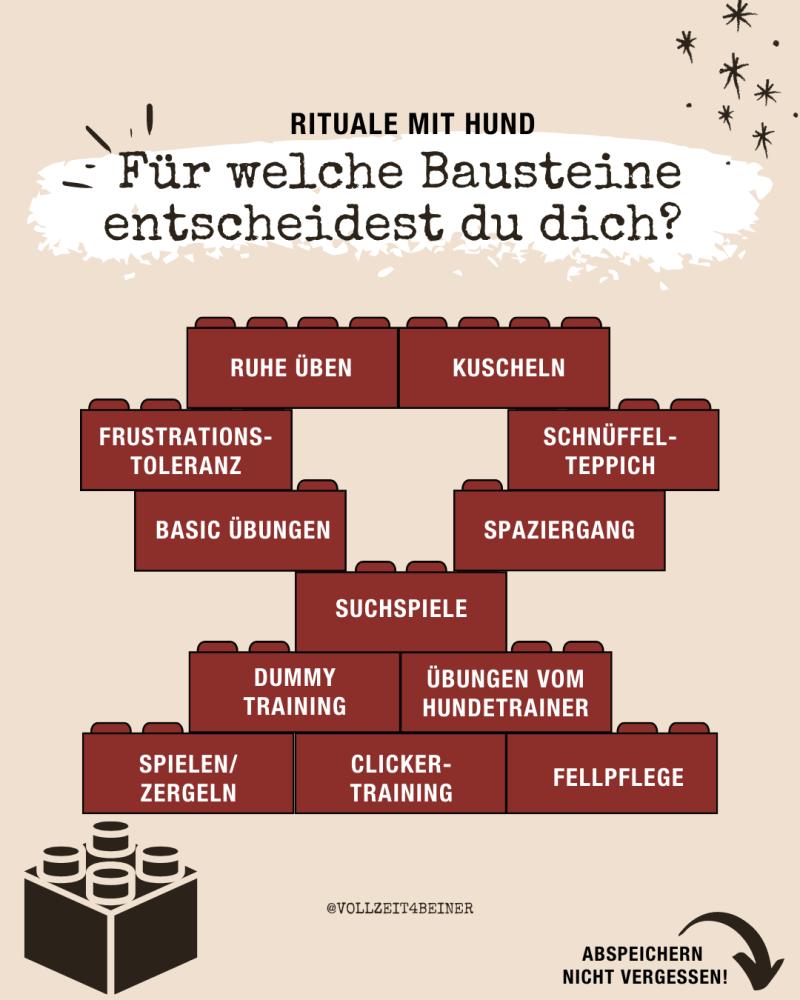 bausteine-rituale-mit-hund-routinen-hundetraining