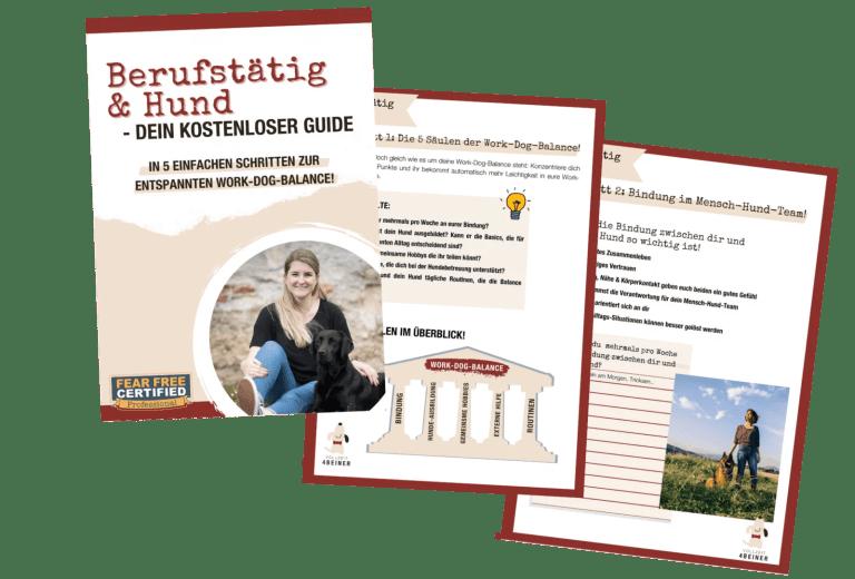 berufstätig-und-hund-kostenloser-guide-gratis-hundetrainer-hundeschule-vollzeit4beiner
