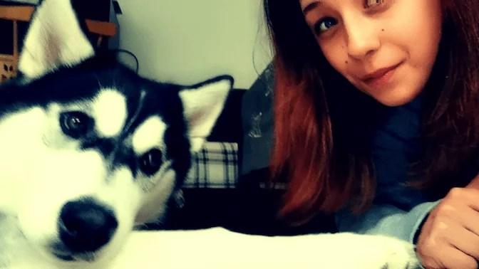 testimonial-work-dog-balance-2