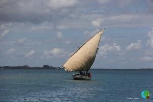 Navegació en Dohw per les QUIRIMBAS 85-imp