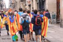 Diada Nacional de Catalunya 2013 - 6-imp