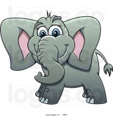 Elefant content 12