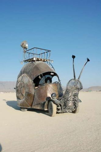 Cargol al desert