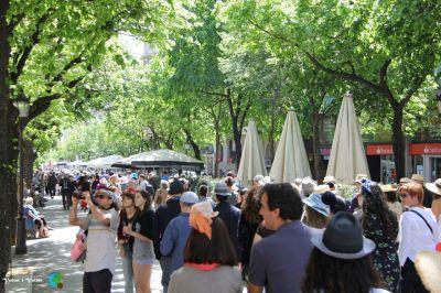 passejada amb barret 2014 - Barcelona77-imp