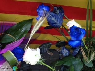 Sant Jordi 2.014 - 077-imp