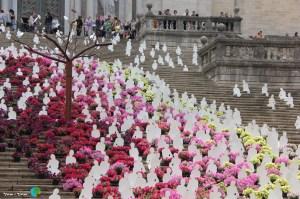 Girona - Temps de Flors 2014 x2-imp