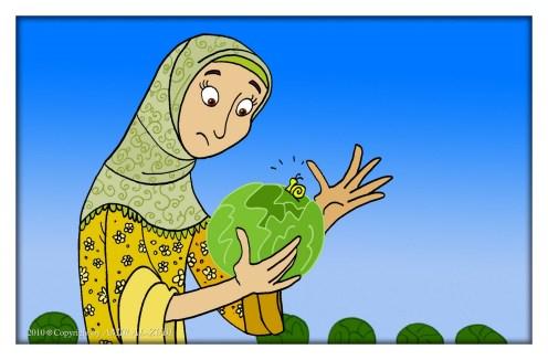 Cargol e Islam