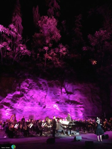 Nit de Musicals - Grec201408-imp