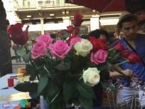 Sant Jordi 2015 21-imp