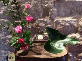Temps de Flors 2016 - Girona 2 - 2