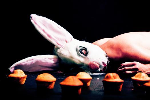macadamia-nut-brittle-2-teatre-lliure
