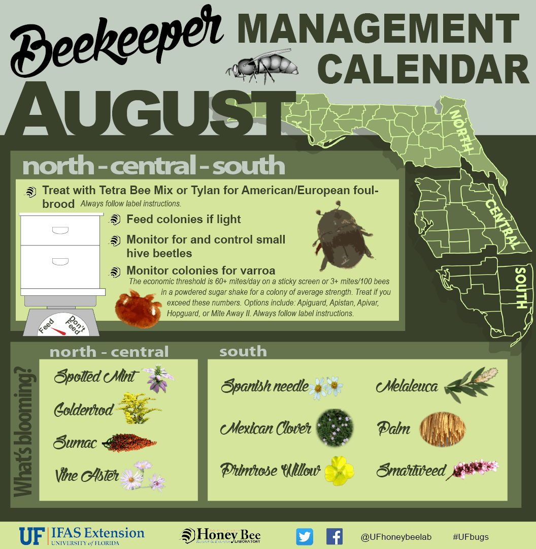 Bee Calendar For Florida Volusia Beekeepers